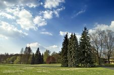 Free Spring Landscape Royalty Free Stock Photography - 5000997