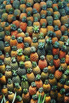 Free Pineapple Pile Stock Image - 5004671