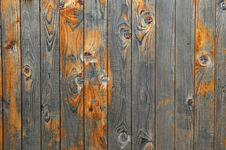 Free Beautiful Wood Texture Stock Photography - 5008282