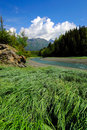 Free River, Meadow, Trees And Mountains, Alaska Stock Photos - 5015633