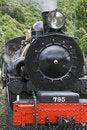 Free Steam Train Royalty Free Stock Photos - 5016608