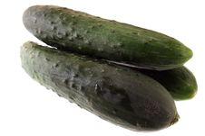 Free Cucumbers Royalty Free Stock Photos - 5011678