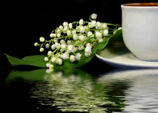 Free Flowers And Cup Of Coffee Royalty Free Stock Photos - 5012278