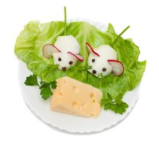 Free Mouse And Cheese Stock Photo - 5013430