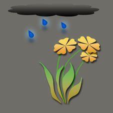 Rainy Garden Stock Photography