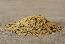 Free Wild Rice Grains Royalty Free Stock Images - 5019689