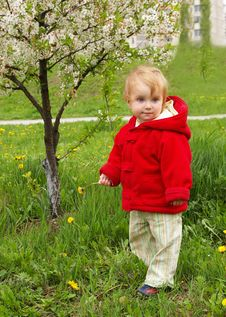 Free Small Girl Goes For A Walk Stock Image - 5021081