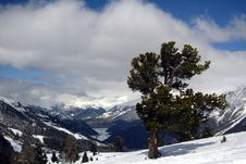 Free Alpine Scenery Stock Image - 5022221