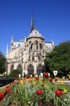 Free Notre Dame Royalty Free Stock Images - 5022719