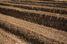 Free Soil. Stock Photos - 5022923