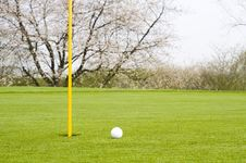 Free Golfing Royalty Free Stock Photo - 5023545