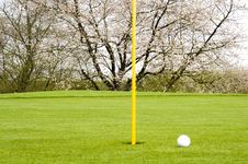 Free Golfing Royalty Free Stock Photography - 5023607