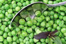 Free Fresh Peas Stock Photo - 5024130