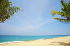 Free Tropic Scene Stock Image - 5024451