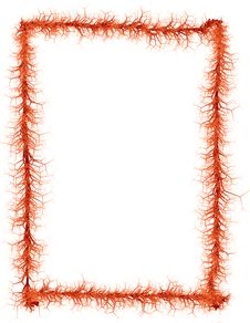 Free Border: Blood Vessels Stock Image - 5024731