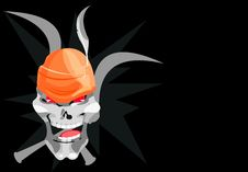 Free Bone Skull Stock Image - 5026131