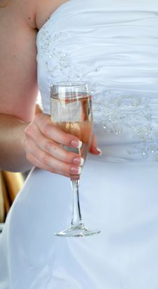 Free Bridal Toast Royalty Free Stock Photography - 5026997