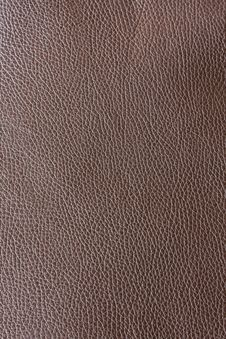 Leather Brown Royalty Free Stock Image