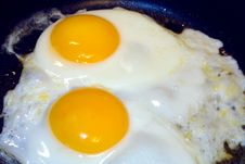 Free Frying Eggs1 Stock Photography - 5027222