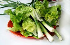 Free Fresh Green Salad Stock Photos - 5027963