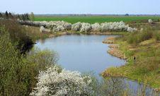 Free Spring Coming Stock Image - 5029141