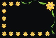 Free The Flowers On Black Background Royalty Free Stock Photos - 5029158