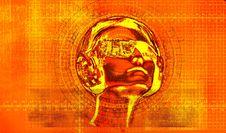 Free NanoCat Stock Image - 5029401