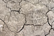 Free Close Up Of Cracked Dried Soil With Footprint Royalty Free Stock Photography - 5029707