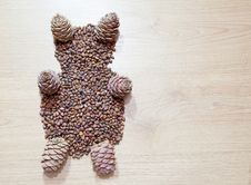 Free Bear From Cedar Cones Stock Photo - 50278550
