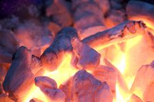 Free Live Coals Royalty Free Stock Images - 5030919