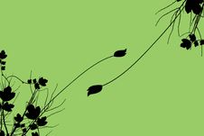 Free Growing Plants Stock Image - 5031251