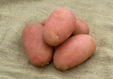 Free Potatoes On A Linen Sack Stock Photo - 5033380