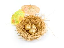 Nest With Golden Eggs Royalty Free Stock Photos