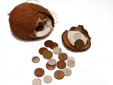 Free Coco Coins Money Stock Photo - 5033740