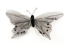 Free Black Butterfly Royalty Free Stock Photography - 5034967