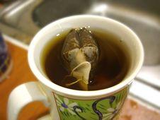 Free Tea Royalty Free Stock Photography - 5037367