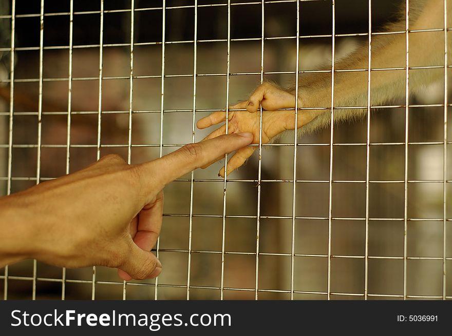 Please Set Me Free