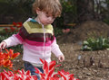Free Child In The Garden Royalty Free Stock Photo - 5049065