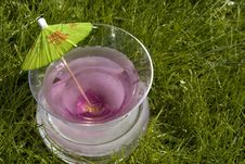Spring Martini Stock Photography