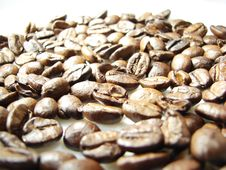 Free Natural Brown Coffee Beans Royalty Free Stock Photo - 5040955