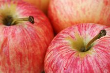 Rosy Apples Stock Photos