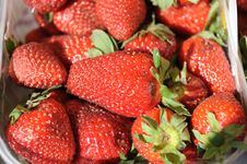 Free Closeup.Strawberry Royalty Free Stock Images - 5041759