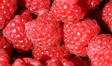Free Fresh Raspberries Stock Image - 5041791