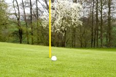 Free Golfing Royalty Free Stock Photos - 5042608