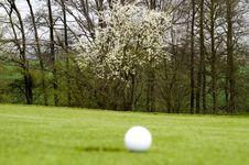 Free Golfing Royalty Free Stock Image - 5042676