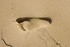Free Footprint On Sandy Beach Stock Images - 5042764