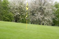 Free Golfing Stock Photo - 5042920