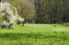 Free Golfing Royalty Free Stock Image - 5042996