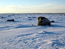Free Winter Landscape Royalty Free Stock Image - 5043976