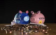 Free Piggy Bank Royalty Free Stock Images - 5045849
